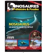DINOSAURES PREHISTOIRES & FOSSILES N°6