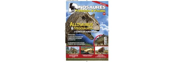 Dinosaures Préhistoire & Fossiles
